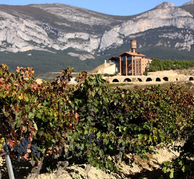 Book your wine trip online now!